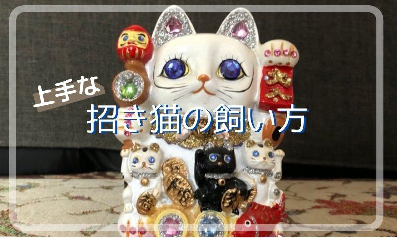 招き猫置物プレゼント